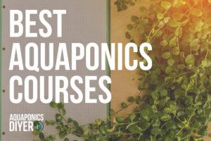 aquaponics course