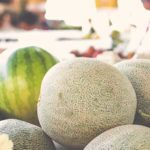 melons and watermelons for aquaponics